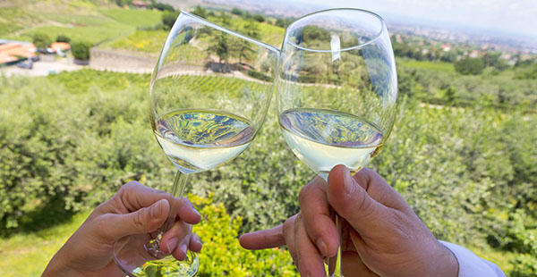 FOOD & WINE TOUR AT FRASCATI AND OLD VILLAGES OF CASTELLI ROMANI